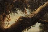 Dipinto olio su tela autore Jan Frans Van Bloemen, fine XVII-13