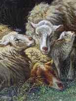 Анри де Beul 1845-1900 Захватывающий Пастырское The Storm-12