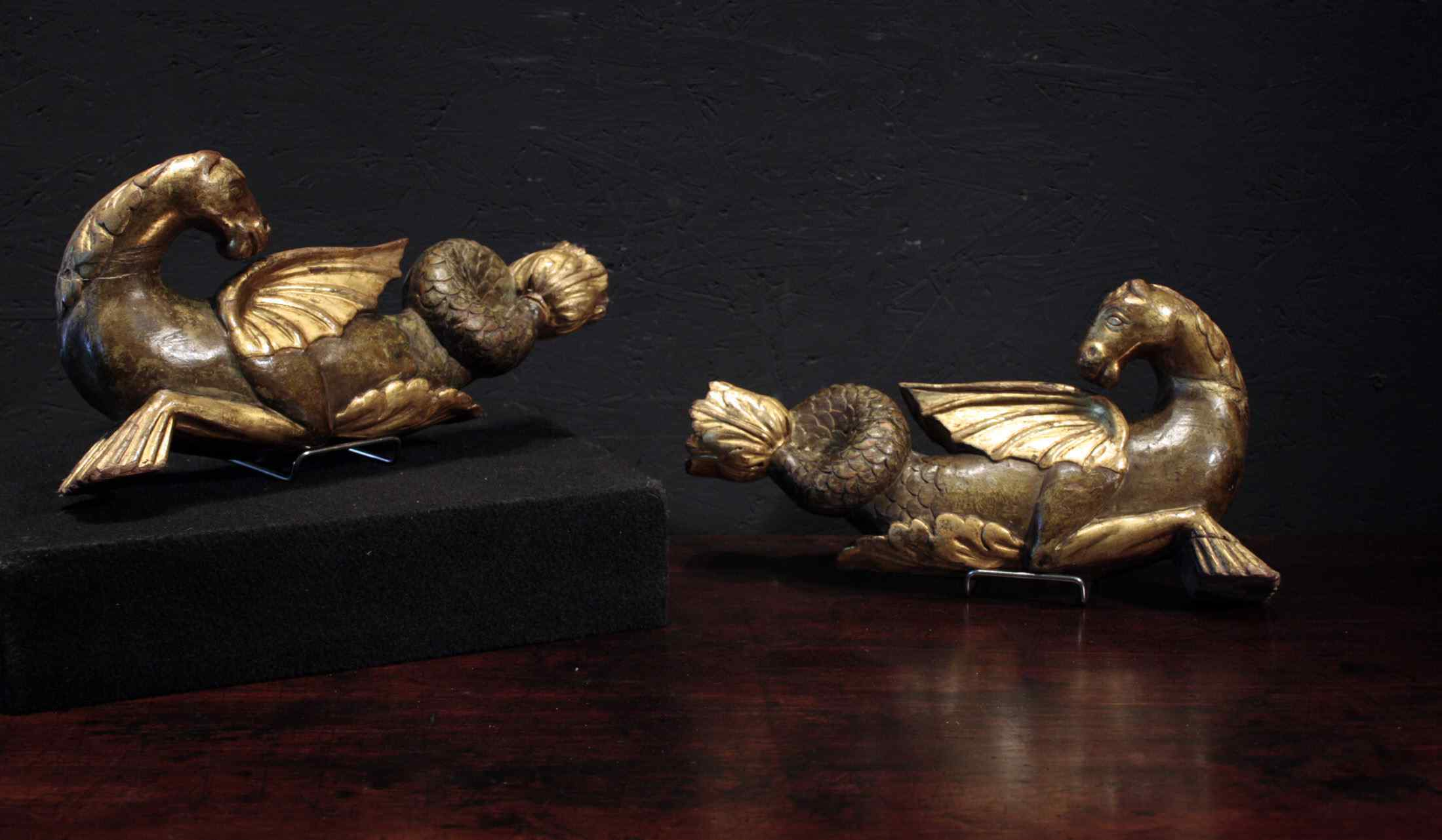 Couple de hippocampes débuts marine 800