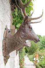 Coppia di trofei da caccia, Francia XIX secolo-6