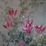 Coppia di acquerelli antichi-6